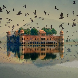 Jal Mahal looks floating on the Lake